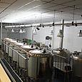 Alvinne Brewery Moen